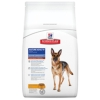 Hills Canine Mature Adult 5+ Large Breed - 12 kg